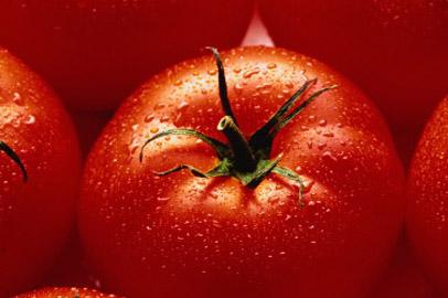 Перед новогодними праздниками в Приамурье подорожали огурцы и помидоры