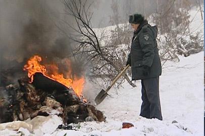 Жители Новотроицкого обнаружили коровье кладбище прямо за околицей