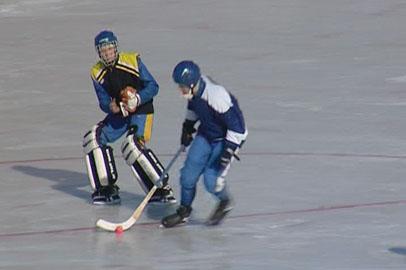 На хоккейных площадках Приамурья шайбы меняют на мячи
