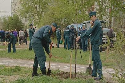 Амурские пожарные и спасатели озеленили парки