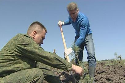 Губернатор Приамурья поучаствовал в озеленении Муравьевского парка