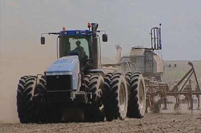 Ученые рекомендуют амурским аграриям сеять сою до конца июня