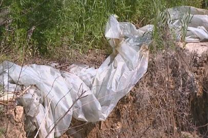 Китайские аграрии оставили на полях Благовещенского района свалки отходов