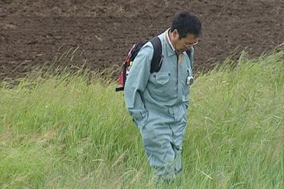 На амурских полях посеяли сою и гречиху по японской технологии