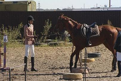 Закрытие сезона конного спорта в Благовещенске отметили соревнованиями