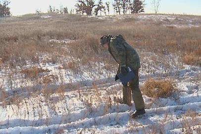 Амурские охотоведы подсчитали популяцию дичи