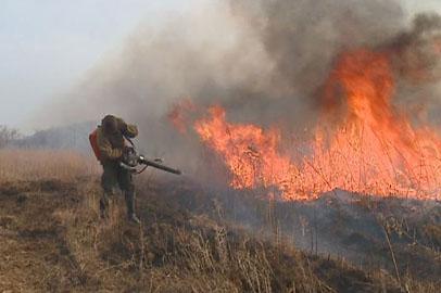 Пожарные отстояли село Нагорное Октябрьского района