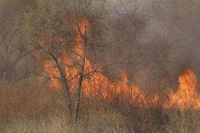 МЧС: самая сложная борьба с огнём предстоит в мае