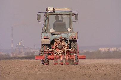 На юге Приамурья раньше обычного начали сеять сою