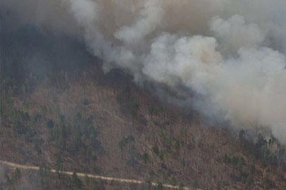 В Приамурье пожары тушат около сотни огнеборцев из соседних регионов