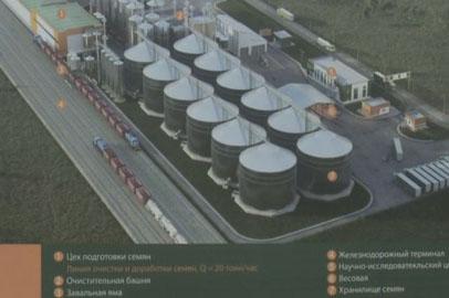 Семенной завод станет сердцем Екатеринославской ТОР