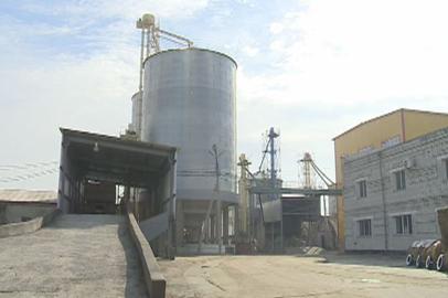 200 тонн сои в сутки планируют перерабатывать на новом заводе в Благовещенске