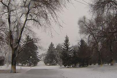 Циклон со снегом и ветром надвигается на Приамурье