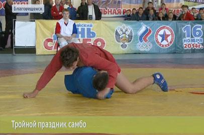Самые сильные самбисты Приамурья и Хабаровского края тренируются в Благовещенске