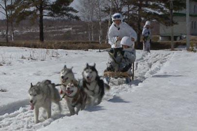 Арктические стрелки из ДВВКУ осваивают управление собачьими упряжками