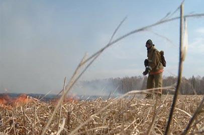 А.Козлов: В ситуации с лесными пожарами надо работать на опережение
