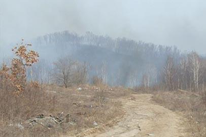 Противопожарная обстановка в Приамурье стабилизировалась