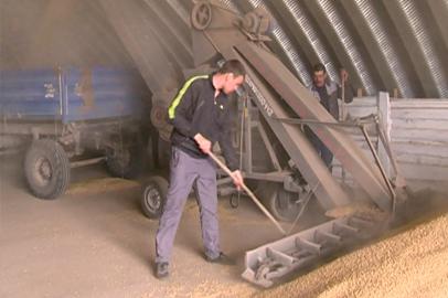Рабочие кадры для семенного завода готовит филиал Амурского аграрного колледжа