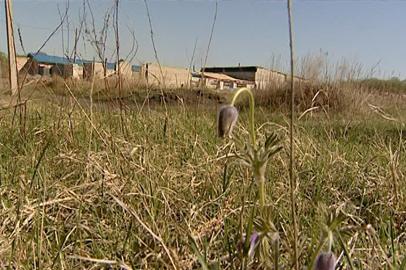 Завитинским фермерам предложат неиспользуемые земельные участки