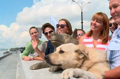 Героического пса Дружка привезли на открытие памятника в его честь