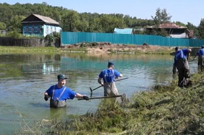 Амурские спасатели помогли очистить озеро в Садовом