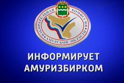 О старте предвыборной агитационной кампании кандидатов на пост губернатора Амурской области в СМИ