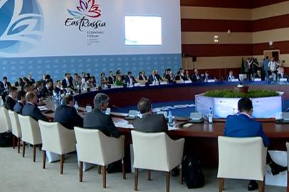 О развитии АПК, энергетики и туризма в Приамурье говорили на ВЭФ