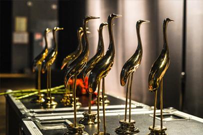 Ни один из сценариев не удостоен высшей награды фестиваля «Амурская осень»