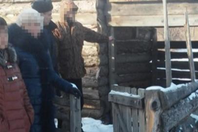 Банду похитителей КРС в Приамурье вычислили по отпечаткам автомобильных шин