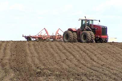 Новую систему зонального земледелия внедрят в Приамурье