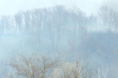 Роспотребнадзор начал мониторинг качества воздуха в Приамурье