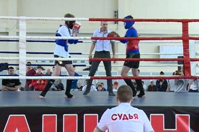 Благовещенцы стали лучшими на областном молодежном турнире по тайскому боксу