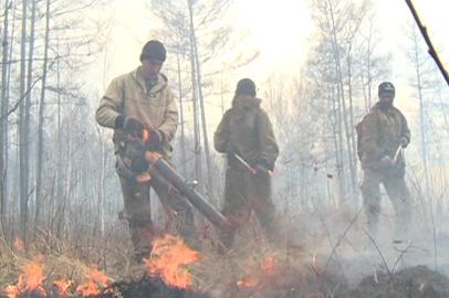 Ветер осложнил пожароопасную обстановку в Приамурье