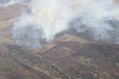 За сутки в Приамурье потушили еще 4 пала