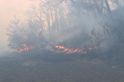С начала пожароопасного сезона в Приамурье оштрафованы 30 человек