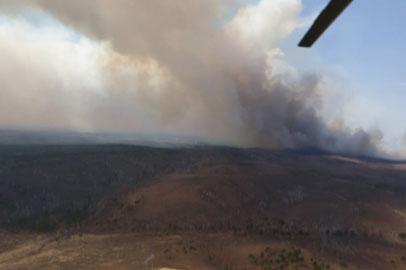 Амурские пожарные отправились тушить леса в Бурятии