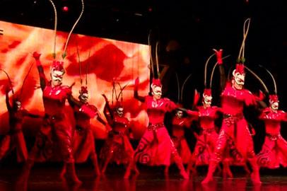Артисты Национального театра оперы и балета КНР выступили перед благовещенцами