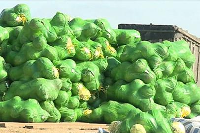 Пострадавших от паводков обеспечили овощами и картофелем