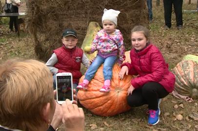 Несколько сотен человек посетили фестиваль тыквы в Благовещенском районе