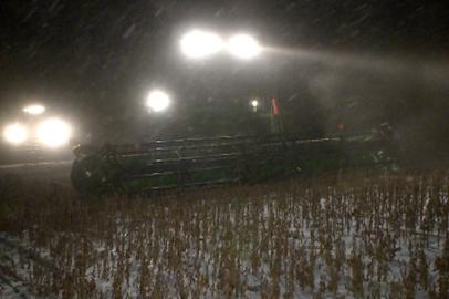 Страда в режиме нон-стоп: амурские соеводы борются за урожай