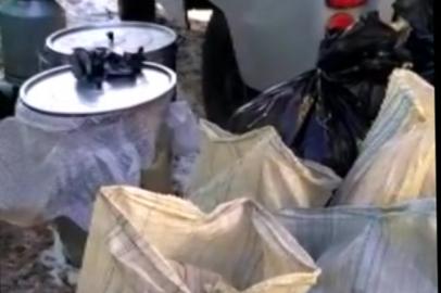 Полицейские изъяли в Тамбовском районе 20 килограммов марихуаны