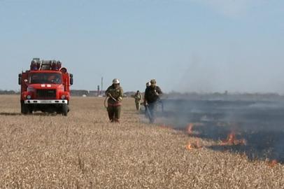 В Приамурье сократилось количество пожаров