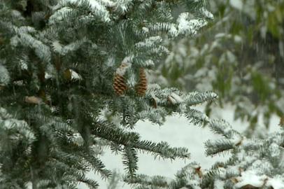 В Приамурье ожидаются обильные снегопады