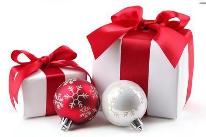 Благовещенцы могут сделать новогодние подарки сиротам
