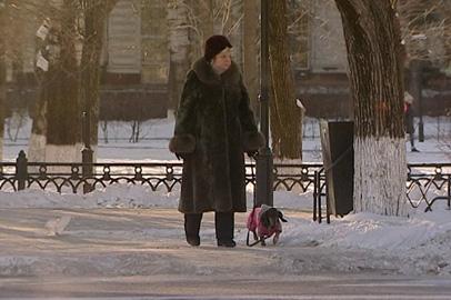 Зима в Приамурье опережает климатический график на две недели