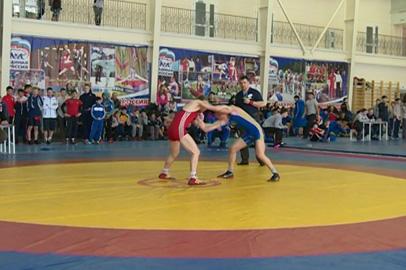 В Благовещенске состоялся заключительный в сезоне турнир по вольной борьбе