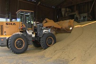 Амурские растениеводы поставили рекорд по сбору урожая зерновых