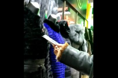 В Приамурье продолжают торговать шубами без чипов