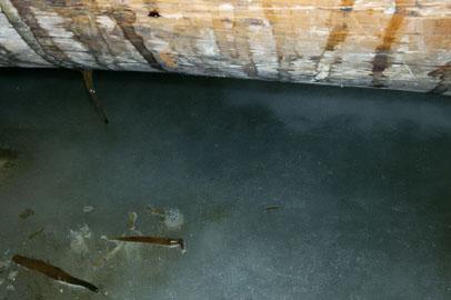В Архаре около 50 частных домов пострадали от разлива грунтовых вод