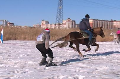 Амурские конники провели турнир при участии лошадей, всадников и лыжников